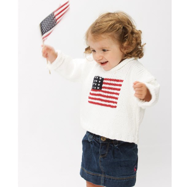 Us Flag Sweater In Choice Of Colors