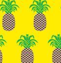 8042 Pineapples