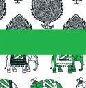 8053 Delhi Mix
