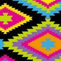 8457 Navajo Disco