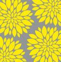 8020 Mums Yellow