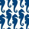 51 Seahorses