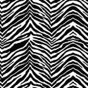8493 Black Zebra