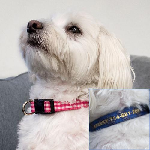 Personalized Dog Collar in Preppy Prints  Animals & Pet Supplies > Pet Supplies > Dog Supplies > Dog Collars & Harnesses