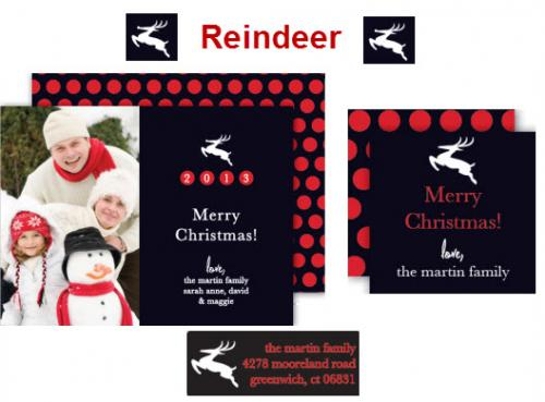 Reindeer Collection Gallery_413