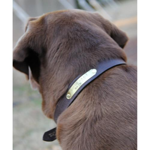 Personalized Leather Finest in the Field Dog Collar  Animals & Pet Supplies > Pet Supplies > Dog Supplies > Dog Collars & Harnesses