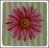 Set Of Four Gerber Daisy Needlepoint Coasters