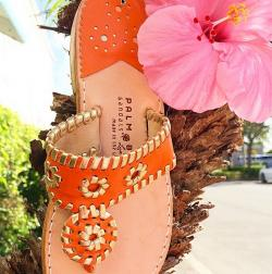 Clementine Classic Sandals with gold trim Clemintine Classic with gold trim NULL