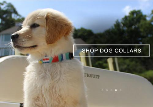 Harding Lane Dog Collars Gallery_910 NULL